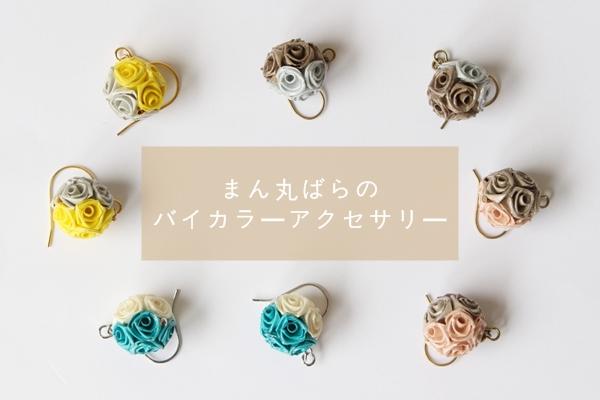 IMG_0262 - コピー